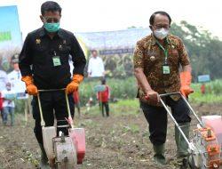 Didampingi Bupati, Menteri Pertanian SYL Tanam Jagung di Blitar