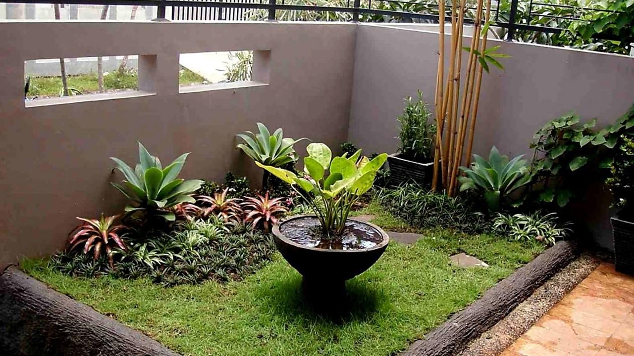 Tanaman di taman halaman rumah