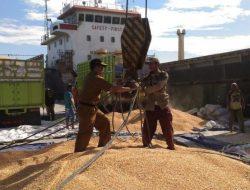Kabupaten Touna Sukses Ekspor Jagung dan Coconut Water Consentrat