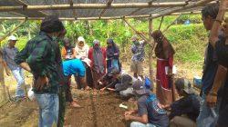 Pelatihan Budidaya Tanaman Hortikultura