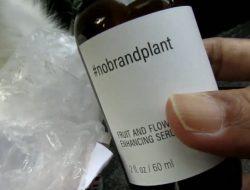 Serum No Brand Plant, Pupuk Cair yang Bisa Selamatkan Tanaman yang Hampir Mati