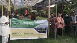 Pelatihan Hidroponik Sulawesi Community Foundation