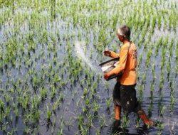 Ketua DPRD Karanganyar Minta Petani Mengontrol Penggunaan Pupuk Bersubsidi