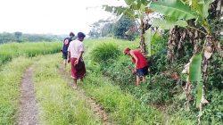 Petani temukan uang di irigasi