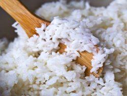 Jangan Mubazir! Manfaatkan Nasi Basi di Rumahmu Jadi Pupuk Organik Cair, Begini Caranya