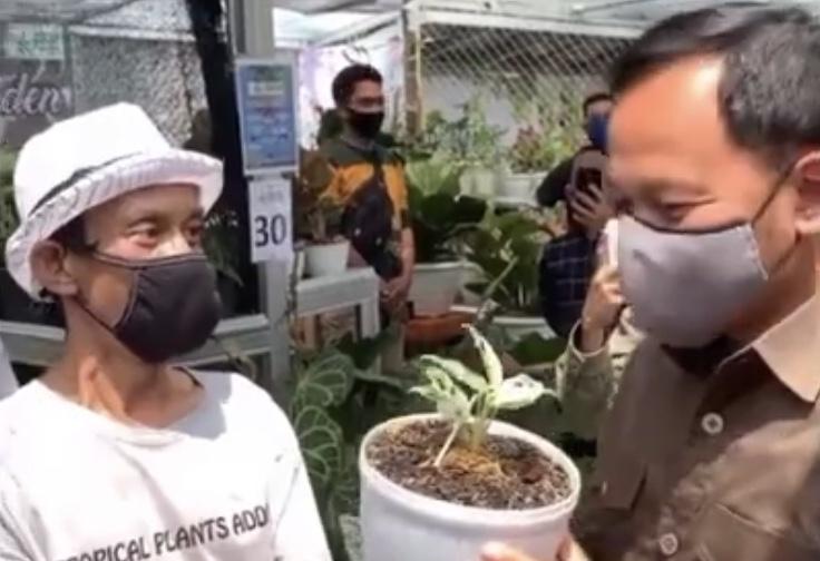 Wali Kota Bogor Bima Arya saat terkejut mengetahui harga tanaman hias Janda Bolong.