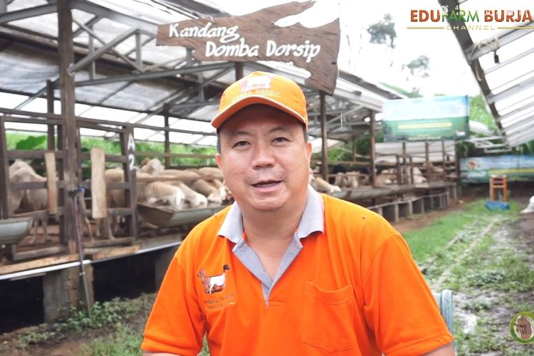 Martinus Alexander pemilik peternakan Domba Dorsip dan Kambing Burja (Dok. Edufarm Burja)/IST