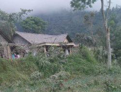 Hujan Abu di Desa Balerante Kotori Pakan Hijauan Ternak