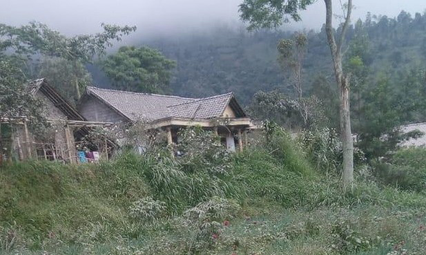 Genting rumah dan dedaunan nampak putih tertutup abu vulkanik (Sri Warsiti)/krjogja.com/ist