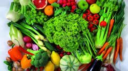 Pengertian-Tanaman-Hortikultura-Jenis-dan-Manfaatnya