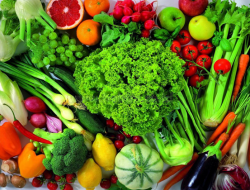 Kontribusi Produk Hortikultura terhadap Pendapatan Petani dan Negara