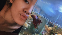 Sheryl Sheinafia dan ikan cupangnya