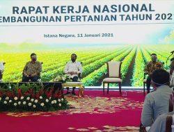 Menempati Posisi Sentral, Jokowi: Pembangunan Pertanian jadi Perhatian Bersama