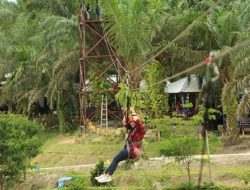 Rawa Tak Produktif Disulap Jadi Destinasi Wisata di Tengah Perkebunan Sawit