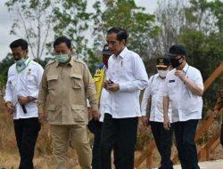 Presiden Jokowi: Jadikan Pangan Sebagai Dimensi Pertahanan