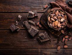 Peneliti Kakao: Produksi Kakao Indonesia Menurun Tiap Tahunnya