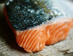 Bukan Hanya Salmon, 5 Jenis Ikan Ini Juga Sangat Sehat untuk Dikonsumsi