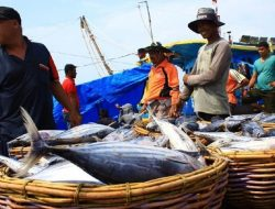 Dosen IPB Soroti Pembangunan Perikanan yang Belum Maksimal
