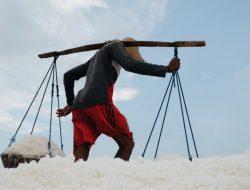 KKP Lakukan Riset dan Inovasi untuk Kembangkan Tambak Garam di Madura