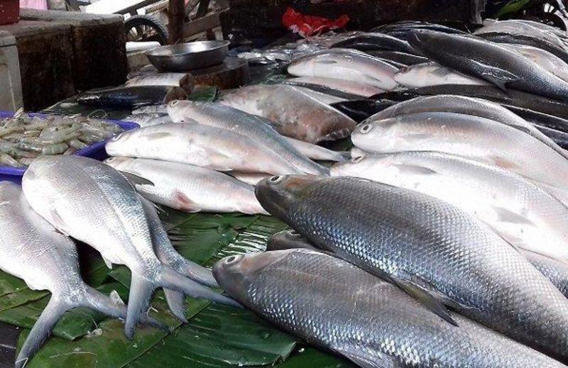 Ilustrasi: penjual ikan bandeng musiman