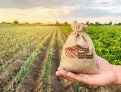 7 Tahap Membangun Usaha Agribisnis Milenial di Era Digitalisasi
