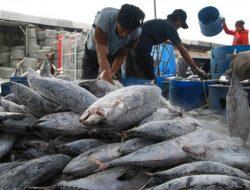 Ekspor Komoditas Perikanan dari Makassar Jangkau 50 Negara