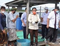 DPR RI Minta KKP Siapkan Sistem Agribisnis Budidaya Ikan Kerapu