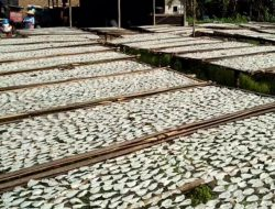 Sempat Terdampak Pandemi, Kualitas Produk Ikan Asin di Subang Kini Lebih Bermutu