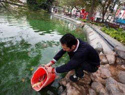 Warga Vietnam Sambut Imlek dengan Melepas Ikan Mas ke Danau