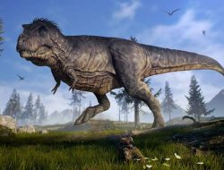 Hewan-hewan Ini Kerabat Dinosaurus yang Hidup sampai Sekarang, Ayam Satu Di antaranya ?