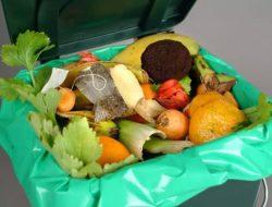 Olah Sampah Organik Jadi Pakan Ternak, Solusi Atasi Penumpukan Sampah