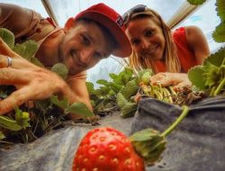 6 Agrowisata di Bali yang Direkomendasikan, Wisata Keluarga Asik sambil Belajar