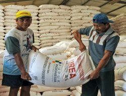 Pembatasan Pupuk Subsidi Sekaligus Sosialisasi Penerapan Pertanian Berkelanjutan