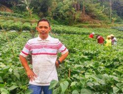 Kisah Inspiratif: Petani Lulusan SD Raih Penghargaan Dunia