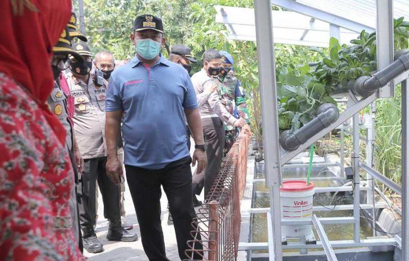 Walkot Semarang Hendrar Prihadi meninjau salah satu pertanian perkotaan (urban farming) di Semarang. (Foto: Istimewa)