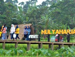 Wisata Baru di Bogor, Kampung Tematik Ciharashas Terapkan Konsep Alam