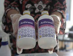 Cegah Spora Antraks, Disnak Tulungagung Lakukan Disinfeksi dan Vaksinasi