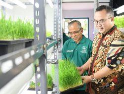 Rektor IPB: Tidak Ada Alasan untuk Impor Beras