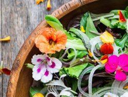 Ini Dia Bunga Yang Bisa Kamu Makan Di Sekitarmu