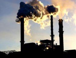 Terkait Darurat Iklim, Aktivis Lingkungan Kirim Petisi dan Desak Presiden Jokowi