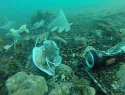 Mikroplastik yang Berasal dari APD Diserap Biota Laut