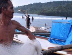 Lobster di Perairan Pangandaran Nyaris Punah, Hasil Tangkapan Nelayan Nihil