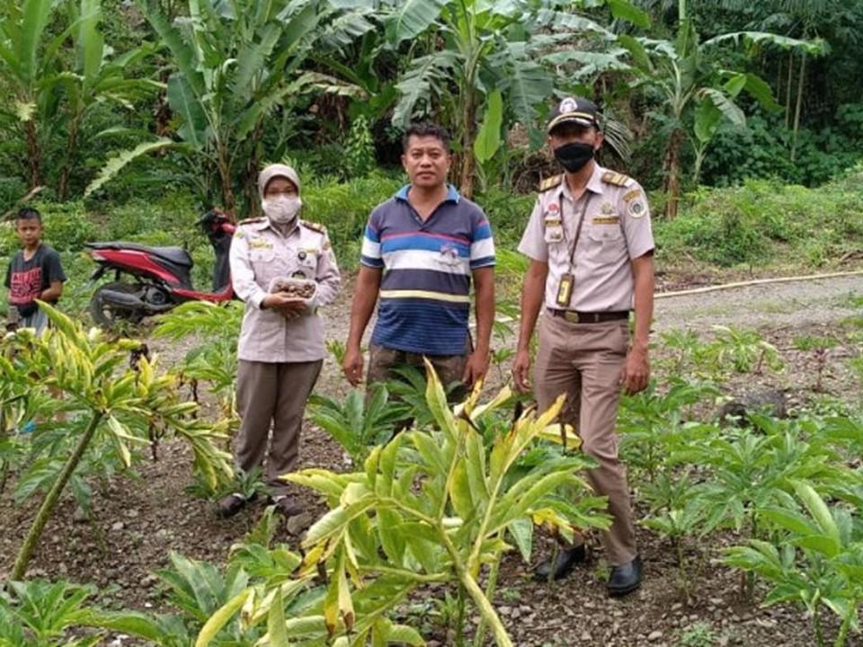 Safari komoditi ekspor Karantina Pertanian Manado