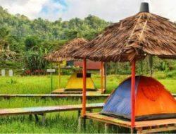 Destinasi Wisata Ini Tawarkan Bermalam di Sawah, Bisa Habiskan Weekend-mu di Sana