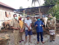 Pemkab Gunung Kidul Intensifkan Program Inseminasi Buatan