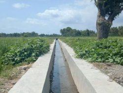 Kementan Dorong Produktivitas Petani dengan Inovasi RJIT