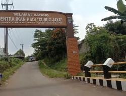 Ikan Tetra Hasil Budidaya Warga Depok Diminati Pasar Mancanegara