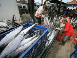 KKP: Tidak Ada Toleransi untuk Eksportir Perikanan yang Nakal Pajak
