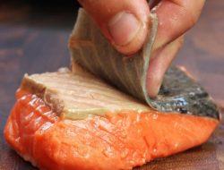 Kulit Ikan Juga Bagus Untuk Kesehatan Loh, Ini Manfaatnya