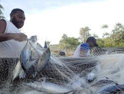 Giliran Biak Numfor Papua yang Ditargetkan Jadi Lumbung Ikan Nasional